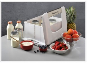 Brod and Taylor bread proofer